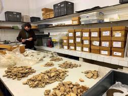 S'assoleixen les 500.000 troballes arqueològiques al conjunt històric d'Olèrdola